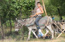 În această imagine din 2012, un elev din Feiurdeni, județul Cluj, călărește măgarul familiei. Cifrele Eurostat reflectă realitățile din România, țară unde Sănătatea și Educația sunt subfinanțate. | Foto: Dan Bodea