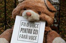 """Campania 40 de zile pentru viață continuă la Cluj cu a şasea ediţie: """"Vrem să luptăm pentru cei care nu au o voce prin care să se apere"""""""