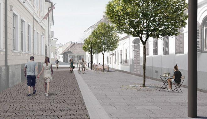 Proiect: Strada Sextil Pușcariu