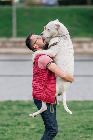 DogsAreFamily (390)