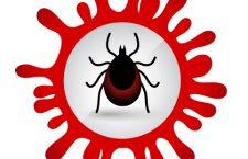 Aplicație mobilă pentru căpușe și insecte hematofage dezvoltată la USAMV Cluj-Napoca