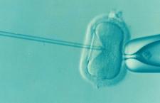 Aproape totul despre problemele de infertilitate (A)