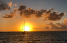 Apus in Barbuda