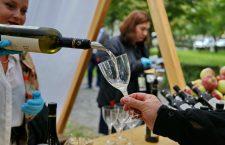 Weekend cu festival al vinului. USAMV are o surpriză pentru clujeni