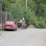 Aproape 2500 de proiecte de dezvoltare rurală în derulare în județul Cluj