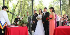 Ioan Hosu: Îţi anunţi nunta, chemi invitaţii şi apoi anulezi tot, că nu-ţi mai place mireasa