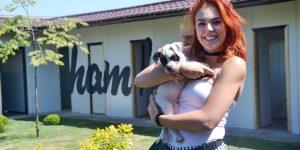 Hotelul Ham Ham, o afacere născută din dragoste pentru căței
