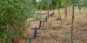 Parcul Feroviarilor, spaţiu de exprimare prin artă