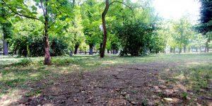 Parcul Central va fi reabilitat. Untold finanțează lucrări de aproape 300.000 de lei