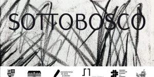 Expoziție internațională de artă la Cluj: SOTTOBOSCO