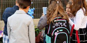 Digitalizarea salvează educația?  Ministerul pregătește modernizarea sistemului de educație românesc